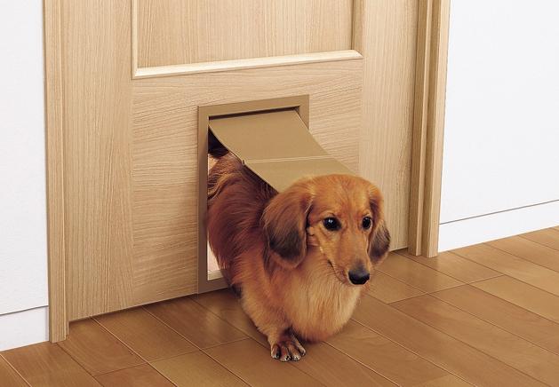 【犬猫用ドア】おすすめのオプション設備