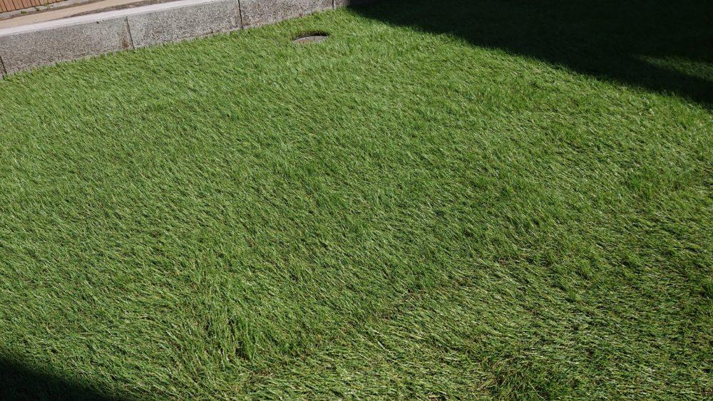 継ぎ目を工夫|人工芝を敷く際のポイント