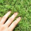【人工芝をDIY】おすすめはリアル人工芝!継ぎ目が自然でコスパ最強